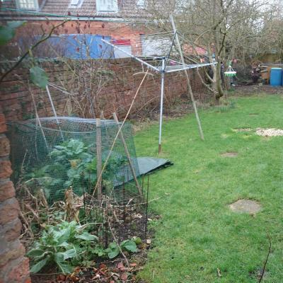 back garden left