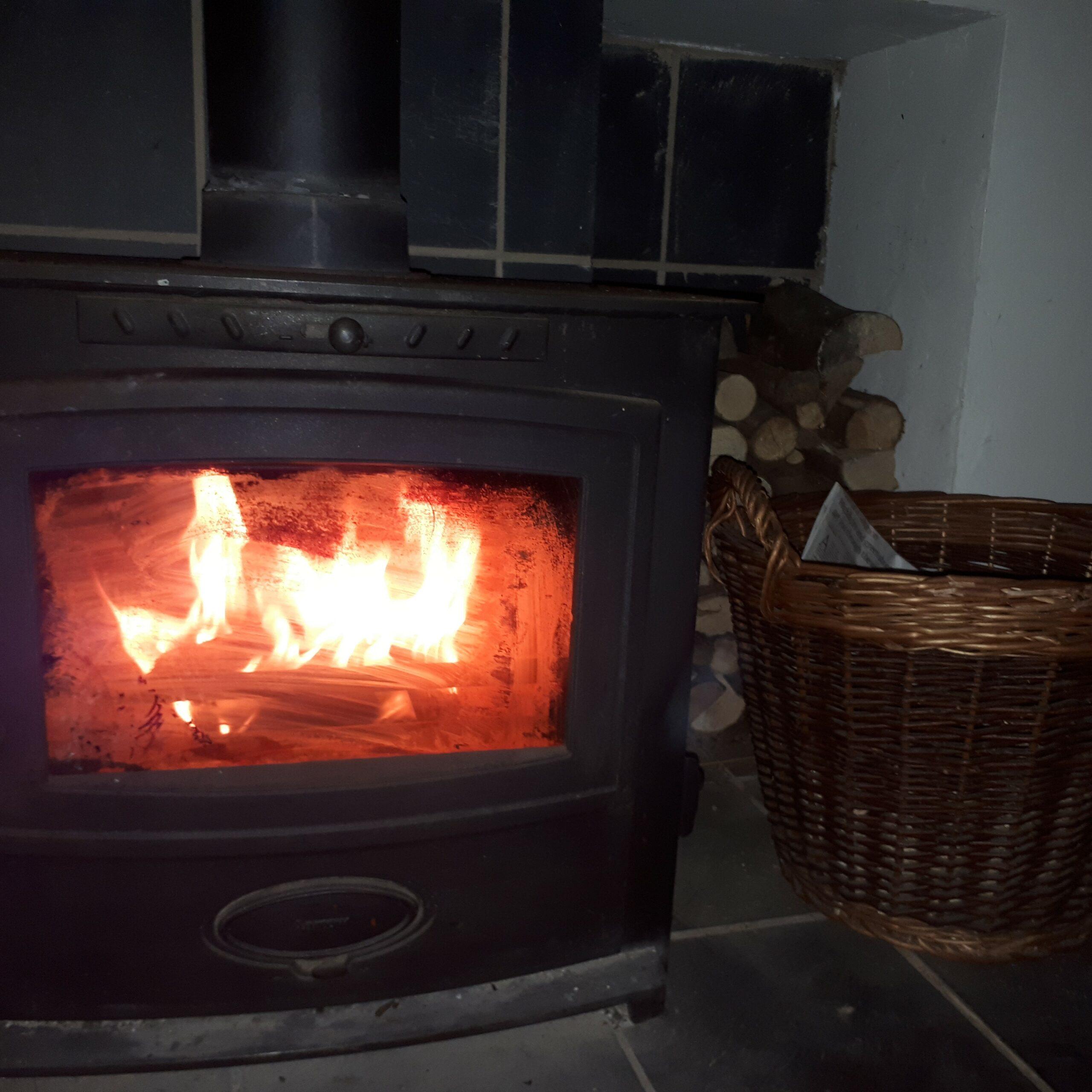 Toasty wood-burner